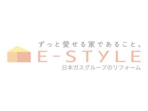 E-style Information